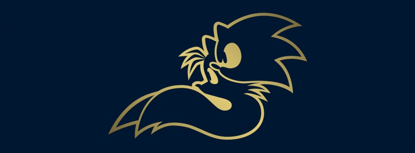 Cover Facebook Sonic 2