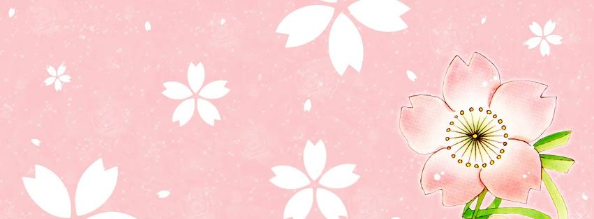Kawaii couverture facebook
