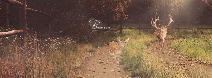 couverture facebook automne besoin de toi