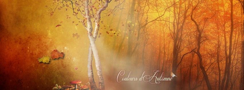 Couverture facebook Couleur d'automne