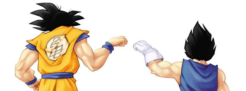 Couverture facebook DBZ dragon ball z vegeta sangoku