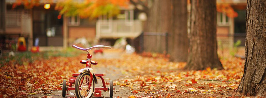 Photo de couverture facebook velo sur la route en plein automne