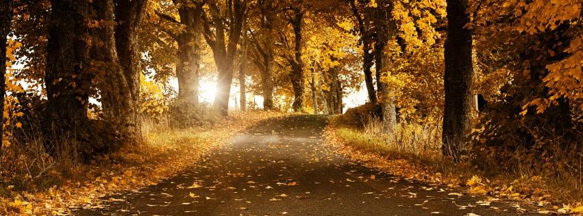photo de couverture facebook automne
